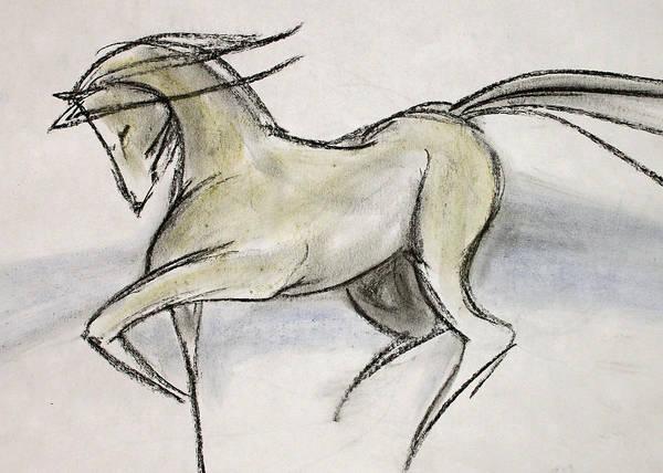 Warmbloods Drawing - Zippy by Jennifer Fosgate