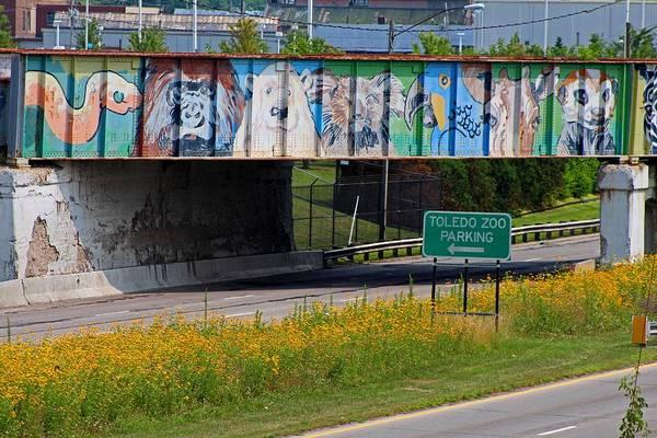 Zoo Mural Art Print