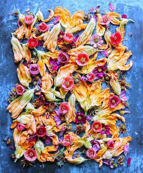 Zucchini Blossoms Season Art Print