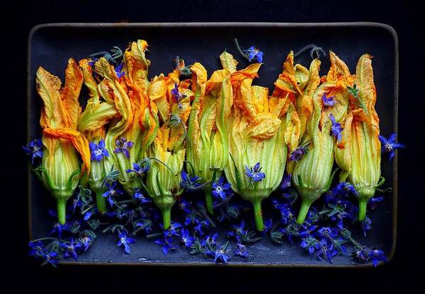 Zucchini Flowers Art Print