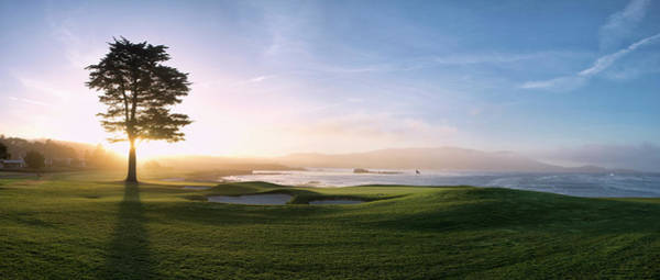 Wall Art - Photograph - 18th Hole With Iconic Cypress Tree by Panoramic Images