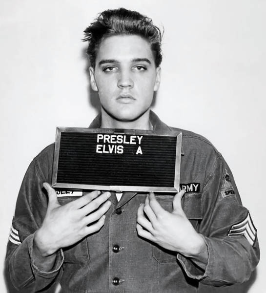 Wall Art - Photograph - 1960 Sergeant Elvis Presley Mugshot Photograph by Daniel Hagerman