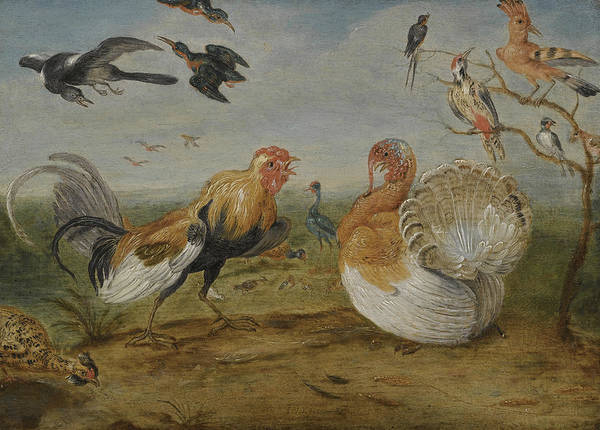 Painting - A Landscape With A Cockerel And A Turkey Squabbling, And Other Fowl by Jan van Kessel the Elder