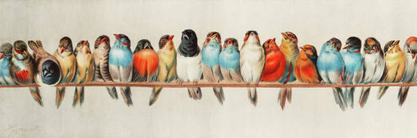 Canaries Painting - A Perch Of Birds, 1880 by Hector Giacomelli