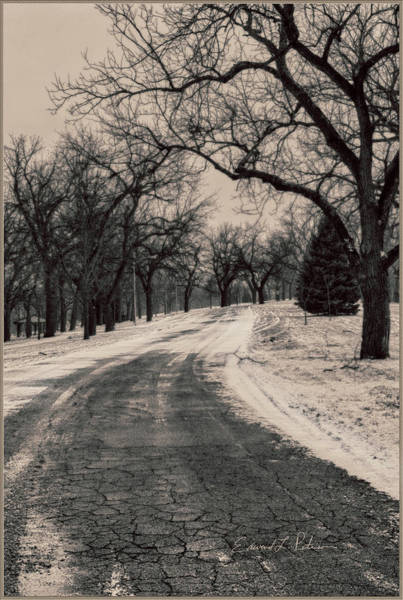 Photograph - A Winter Park by Edward Peterson