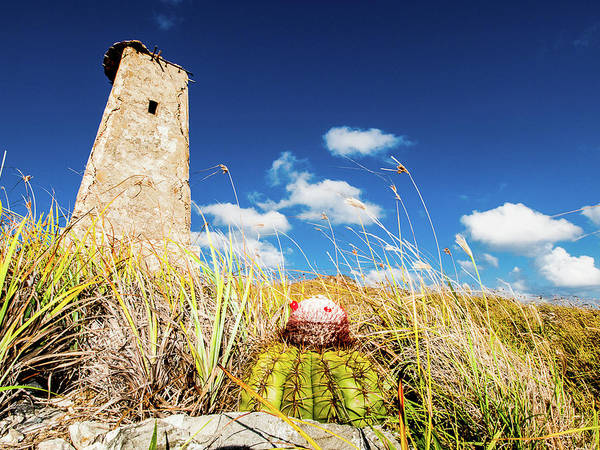 Photograph - Abandoned Old Lighthouse At The Top Of Gran Roque by Organizacion Bluewater