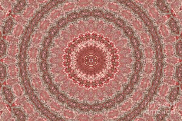 Cinnamon Teal Mixed Media - Abstract 3 by Banyan Ranch Studios