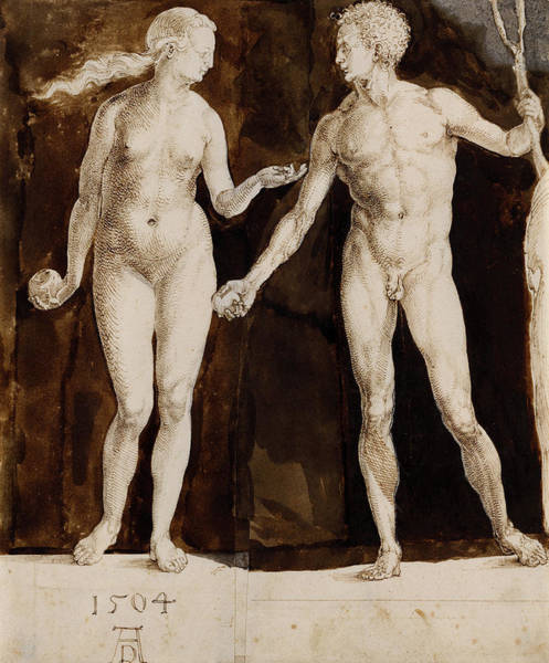 Wall Art - Painting - Adam And Eve, Circa 1504 by Albrecht Durer