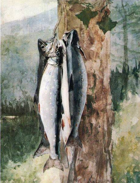 Wall Art - Painting - Adirondack Catch Winslow Homer by Celestial Images