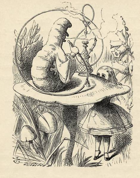 Wall Art - Painting - Advice From A Caterpillar  From  Alice S Adventures In Wonderland  By Lewis Carroll  by John Tenniel