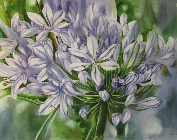 Painting - Agapanthus by Alfred Ng