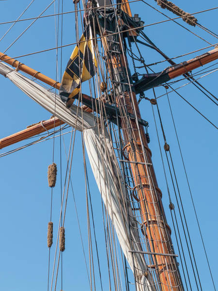 Photograph - Ahoy Mate by Stewart Helberg