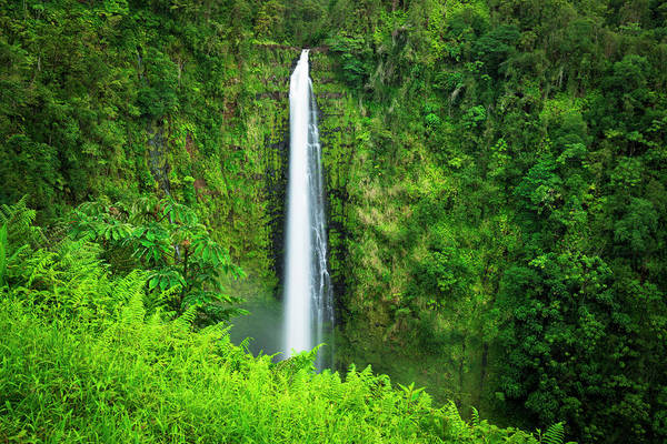 Wall Art - Photograph - Akaka Falls, Akaka Falls State Park by Russ Bishop