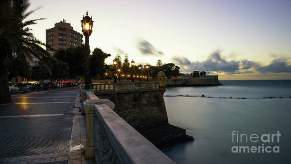 Photograph - Alameda Apodaca Promenade Cadiz Spain by Pablo Avanzini