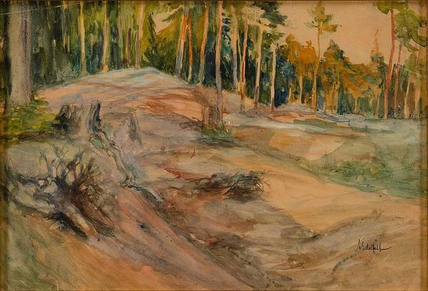 Wall Art - Painting - Albert Edelfelt, Forest Slope In Evening Light by Albert Edelfelt