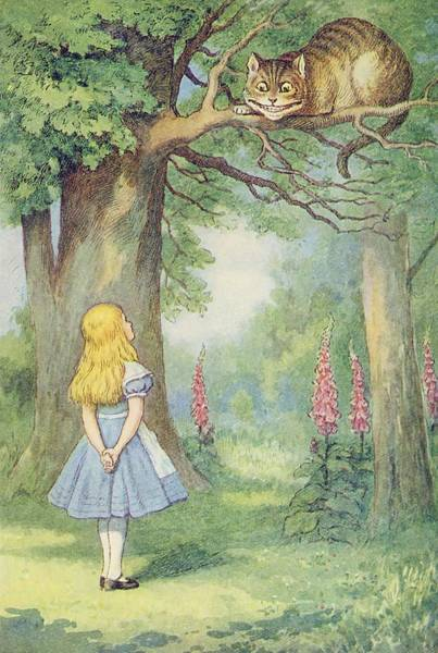 Wall Art - Painting - Alice And The Cheshire Cat  Illustration From  Alice In Wonderland  By Lewis Carroll  by John Tenniel