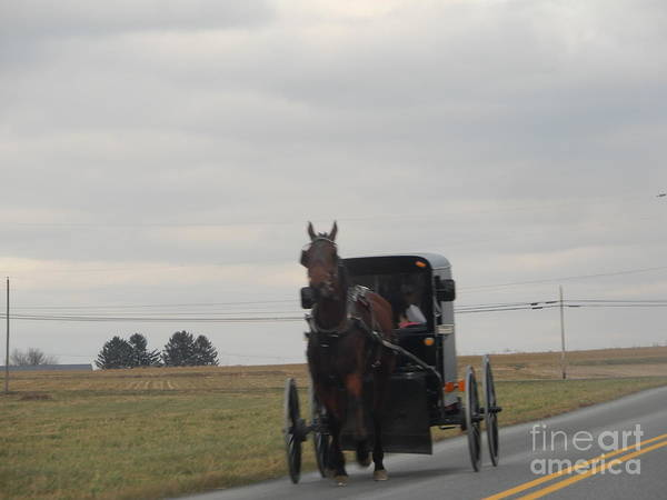 Photograph - An Amish Family In A Buggy by Christine Clark