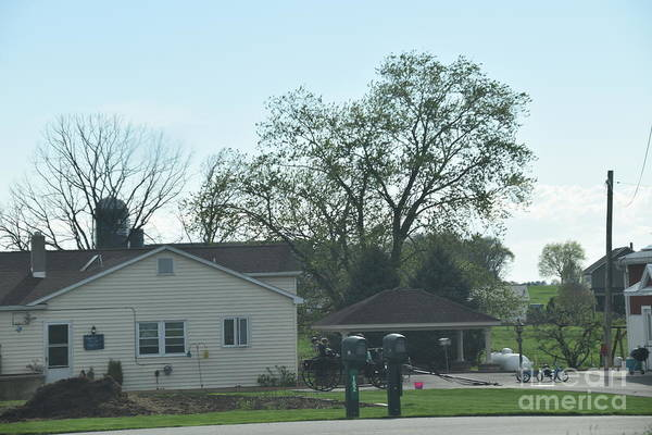 Photograph - An Amish Home In April by Christine Clark