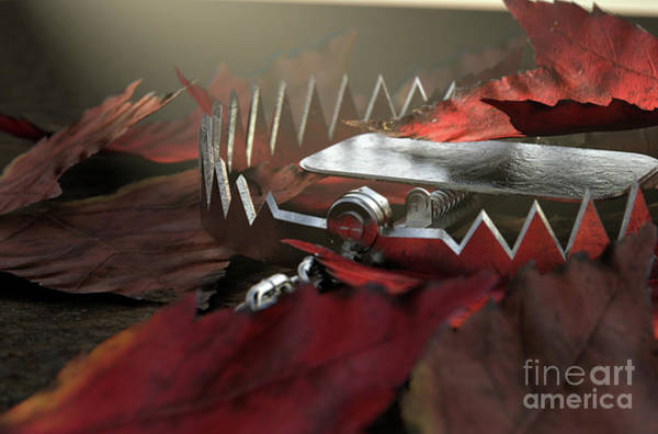 Wall Art - Digital Art - Animal Trap In Leaves by Allan Swart