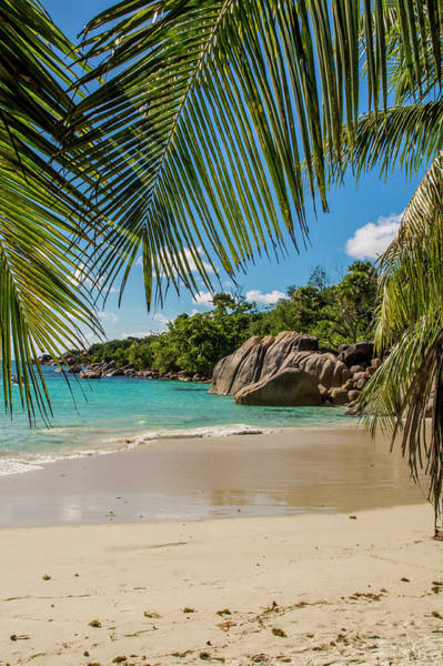 Wall Art - Photograph - Anse Lazio Beach, Praslin, Republic by Michael Defreitas