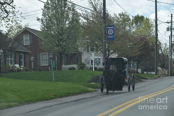 Photograph - April Afternoon Buggy Ride by Christine Clark