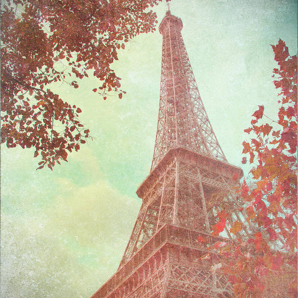 Wall Art - Photograph - April In Paris I by Emily Navas
