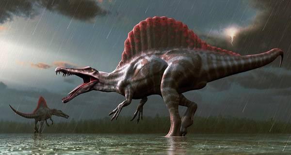 Prehistoric Era Wall Art - Digital Art - Artwork Of A Spinosaurus Dinosaur by Mark Garlick