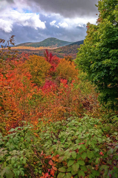 Photograph - Autumn Beginnings In New Hampshire by Dan Sproul