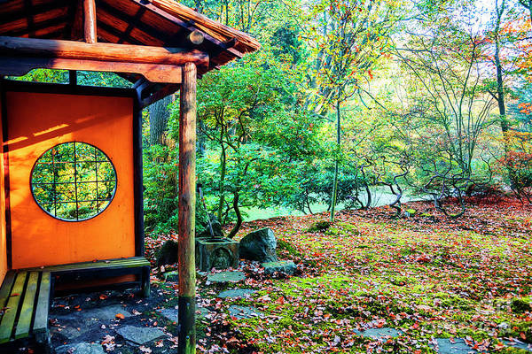 Photograph - autumn in Japanese park, the Hague by Ariadna De Raadt