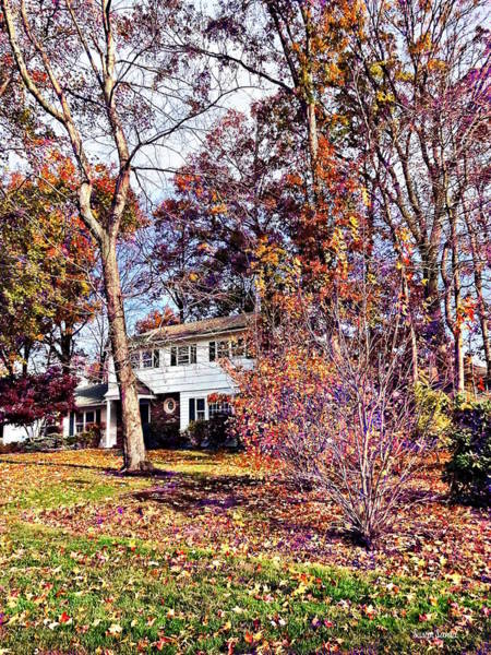 Photograph - Autumn In The Suburbs by Susan Savad