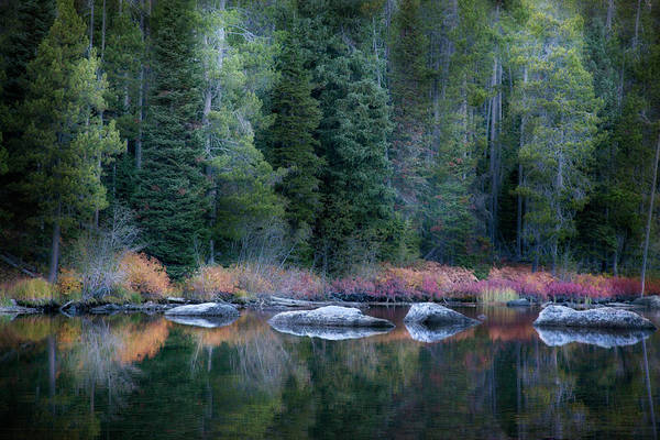 Photograph - Autumn Mountain Stream by David Chasey