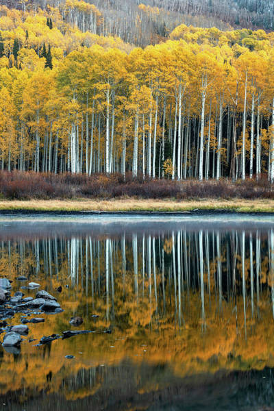 Photograph - Autumn Reflection by Dustin LeFevre