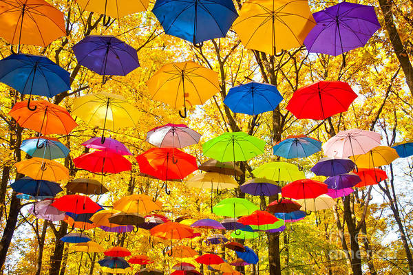 Wall Art - Photograph - Autumn Umbrellas In The Sky by Oleksii Pyltsyn