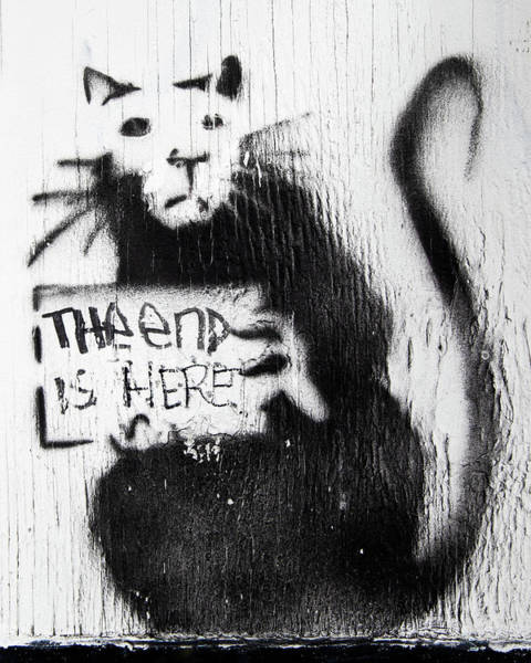 Photograph - Banksy Rat The End Is Here by Gigi Ebert