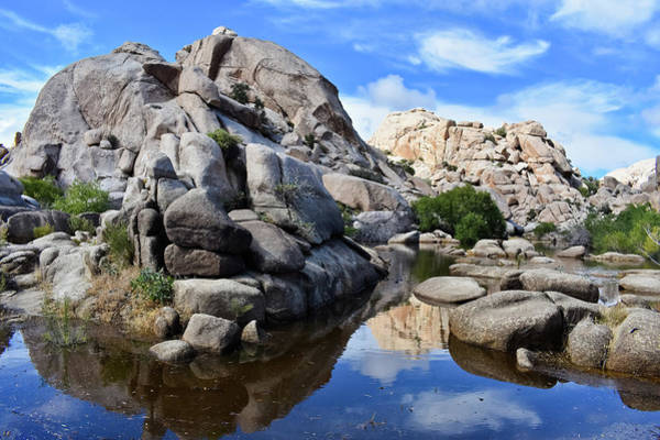 Photograph - Barker Dam Joshua Tree Reflections by Kyle Hanson