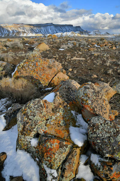 Photograph - Beautiful Boulder Field Of The Book Cliffs by Ray Mathis