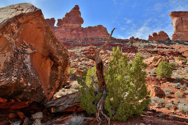 Photograph - Beautiful Valley Of The Gods In Utah by Ray Mathis