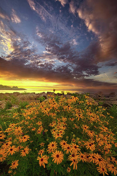 Wall Art - Photograph - Before The Dawn by Phil Koch