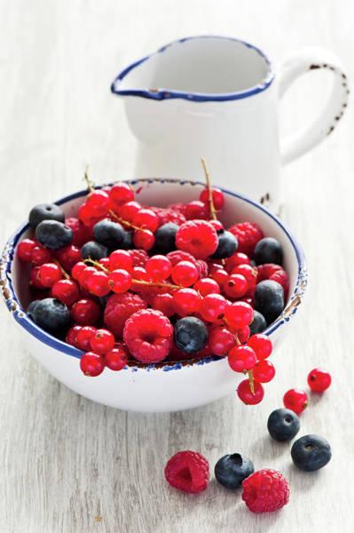 Currants Photograph - Berries by Verdina Anna