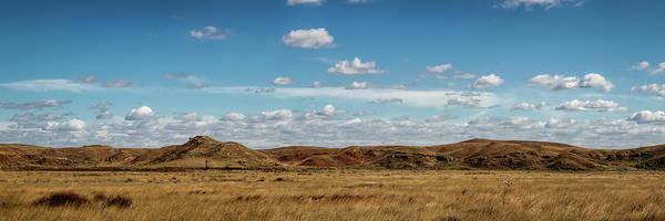 Photograph - Big Basin Panorama by Scott Bean