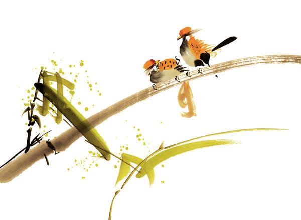 Calligraphy Digital Art - Birds by Vii-photo