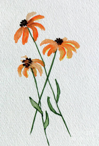 Painting - Black Eyed Susan  by Christiane Schulze Art And Photography