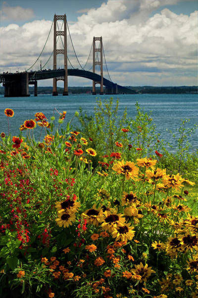 Photograph - Blooming Flowers By The Bridge At The Straits Of Mackinac by Randall Nyhof