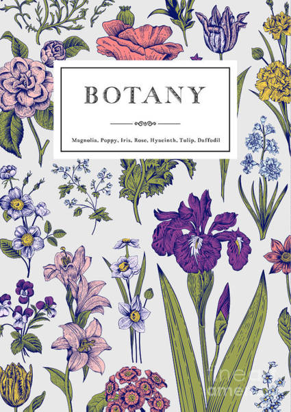 Wall Art - Digital Art - Botany. Vintage Floral Card. Vector by Olga Korneeva
