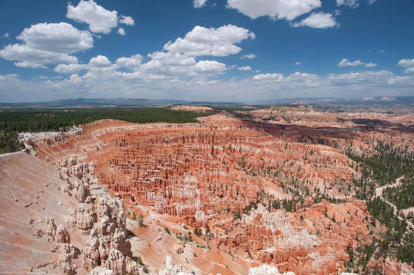 Photograph - Bryce Canyon by Mark Duehmig