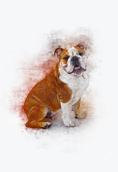 Digital Art - Bulldog by Ian Mitchell