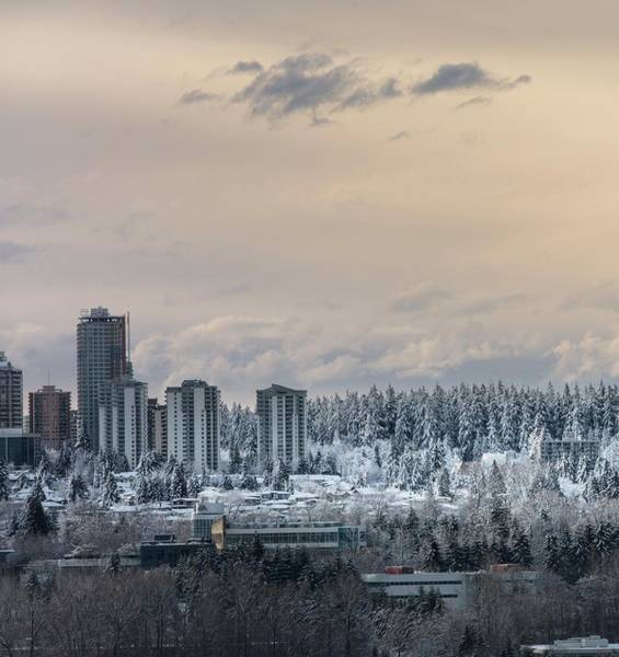 Photograph - Burnaby Winter by Juan Contreras
