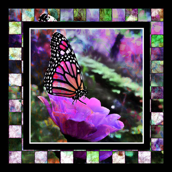Digital Art - Butterflies Are Free  by Cindy Greenstein