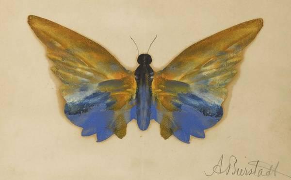 Wall Art - Painting - Butterfly by Albert Bierstadt