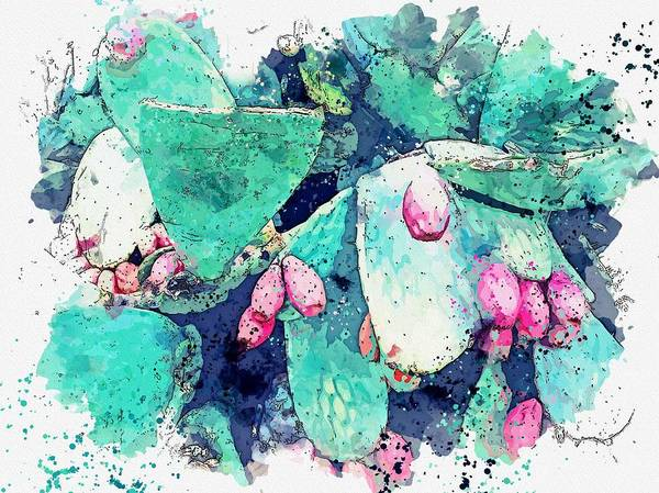 Wall Art - Painting - Cactus Pears -  Watercolor By Adam Asar by Adam Asar